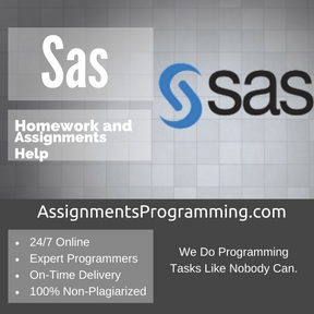 Sas Assignment Help